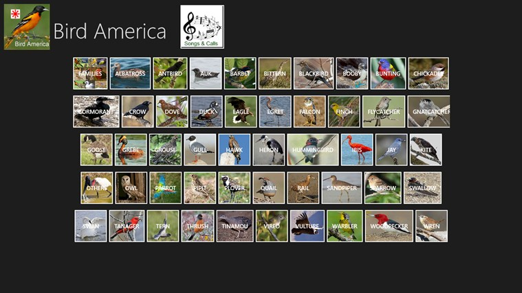 Bird America screen shot 3