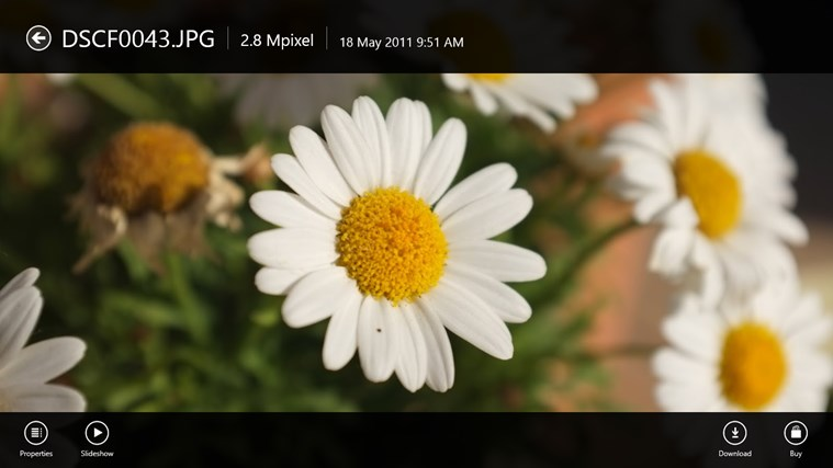 Picasa Viewer HD screen shot 3