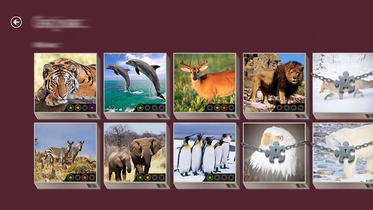 Microsoft Jigsaw screen shot 7
