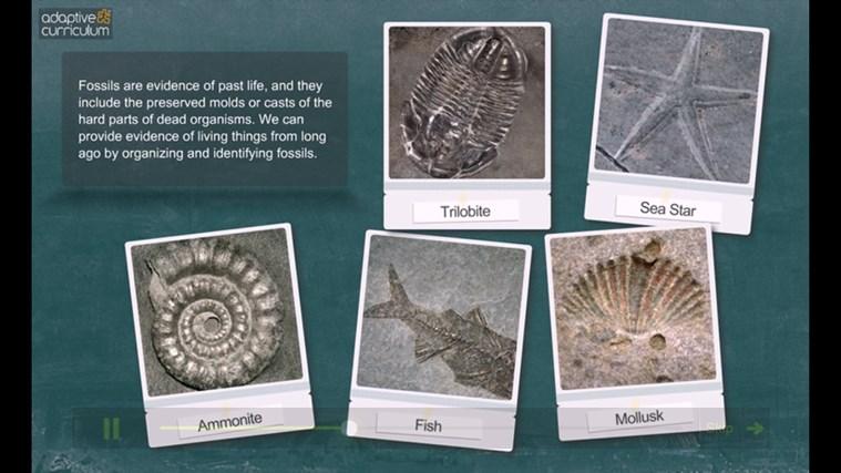 AC Biology: Analysis of Fossil Evidence snímek obrazovky 1