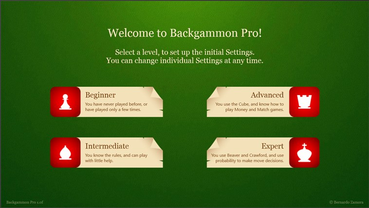 Backgammon Pro screen shot 7