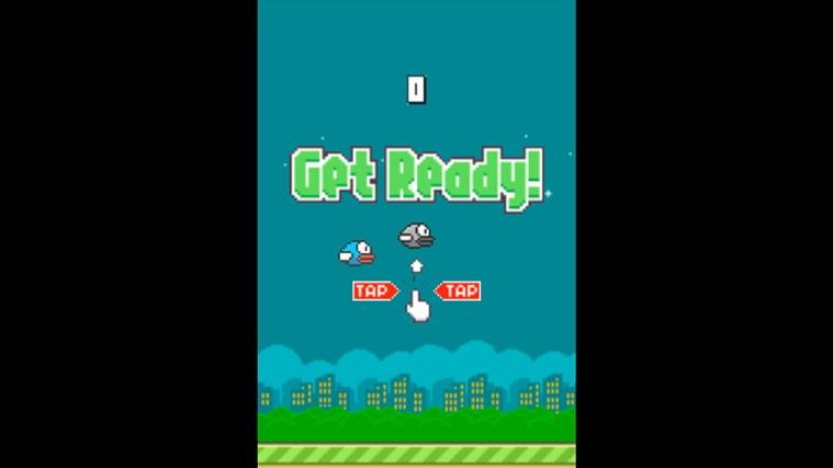 Flappy Bird 8 screen shot 1