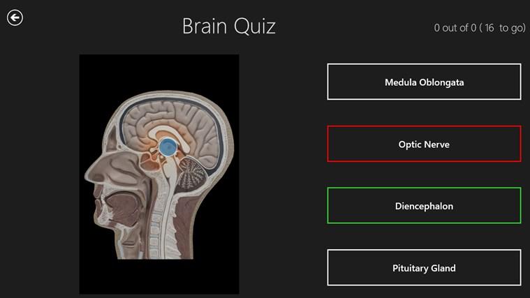 Anatomy 3D: Organs screen shot 3