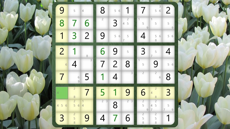 Sudoku Classic screen shot 3
