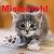Kitten Mismatch