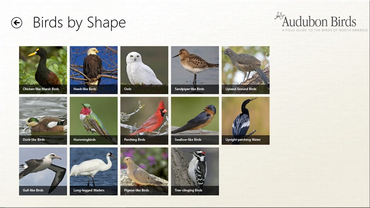 Audubon Birds - A Field Guide to North American Birds screen shot 1