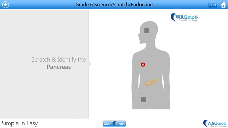 Grade 6 Science by WAGmob screen shot 7