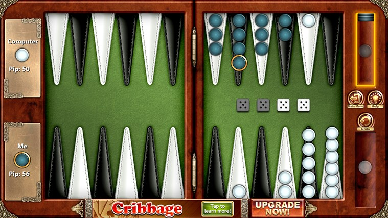 Backgammon Free screen shot 3