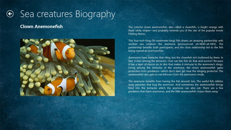 Ocean Creatures screen shot 1