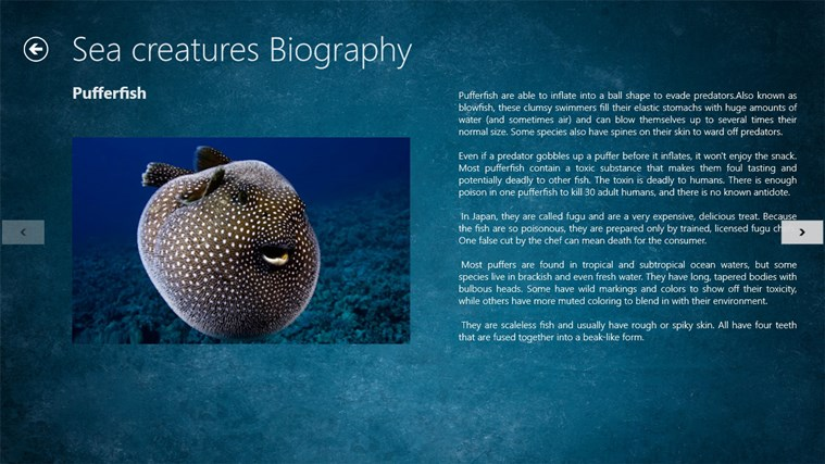 Ocean Creatures screen shot 3