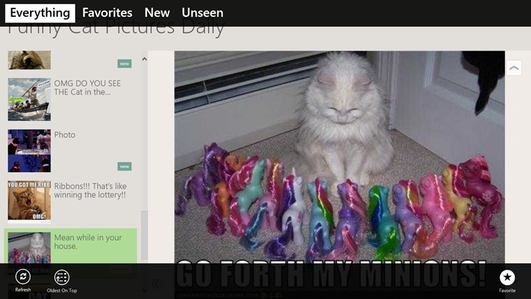Funny Cat Pictures Daily screen shot 1