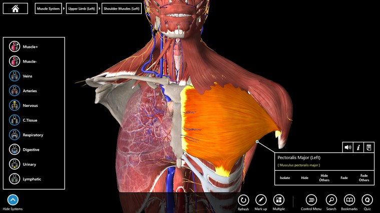 Essential Anatomy 3 screen shot 1