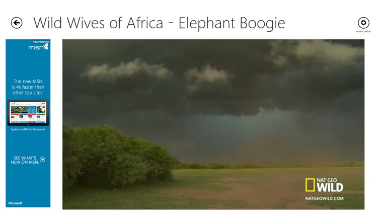 Africa Wild screen shot 1