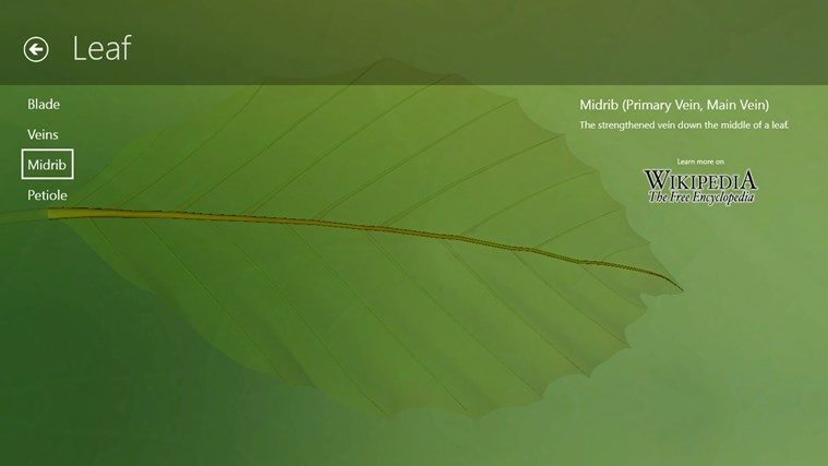 Corinth Micro Plant screen shot 5