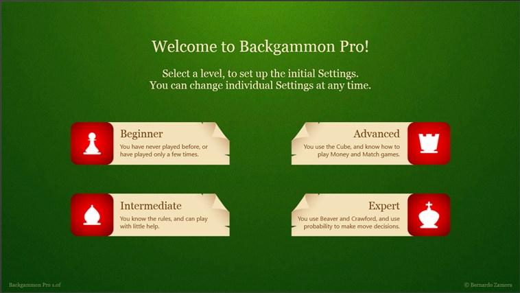 Backgammon Pro screen shot 7